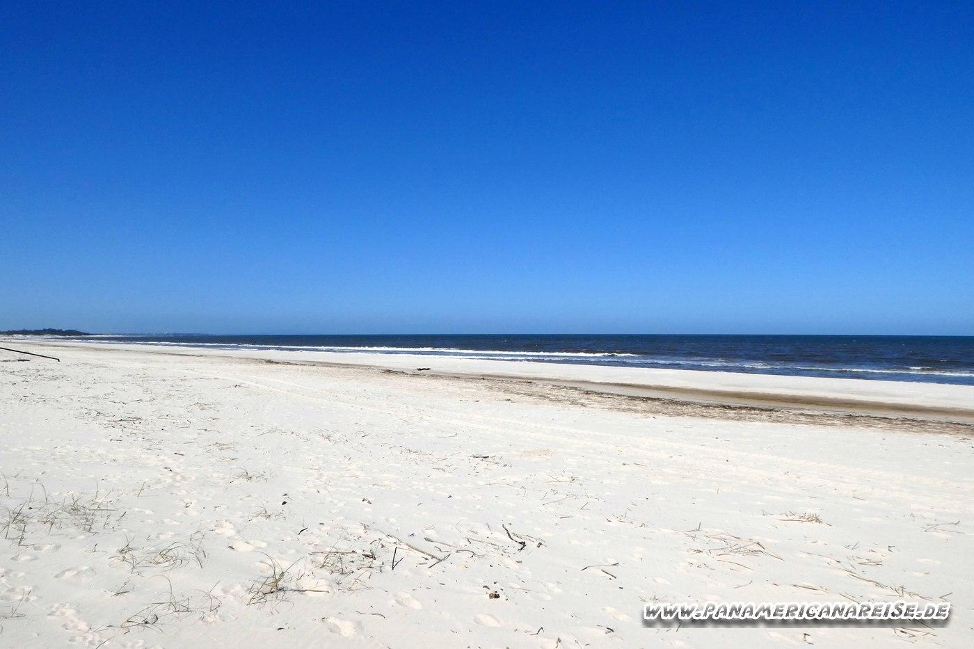 Chihuahua FKK Strand Uruguay