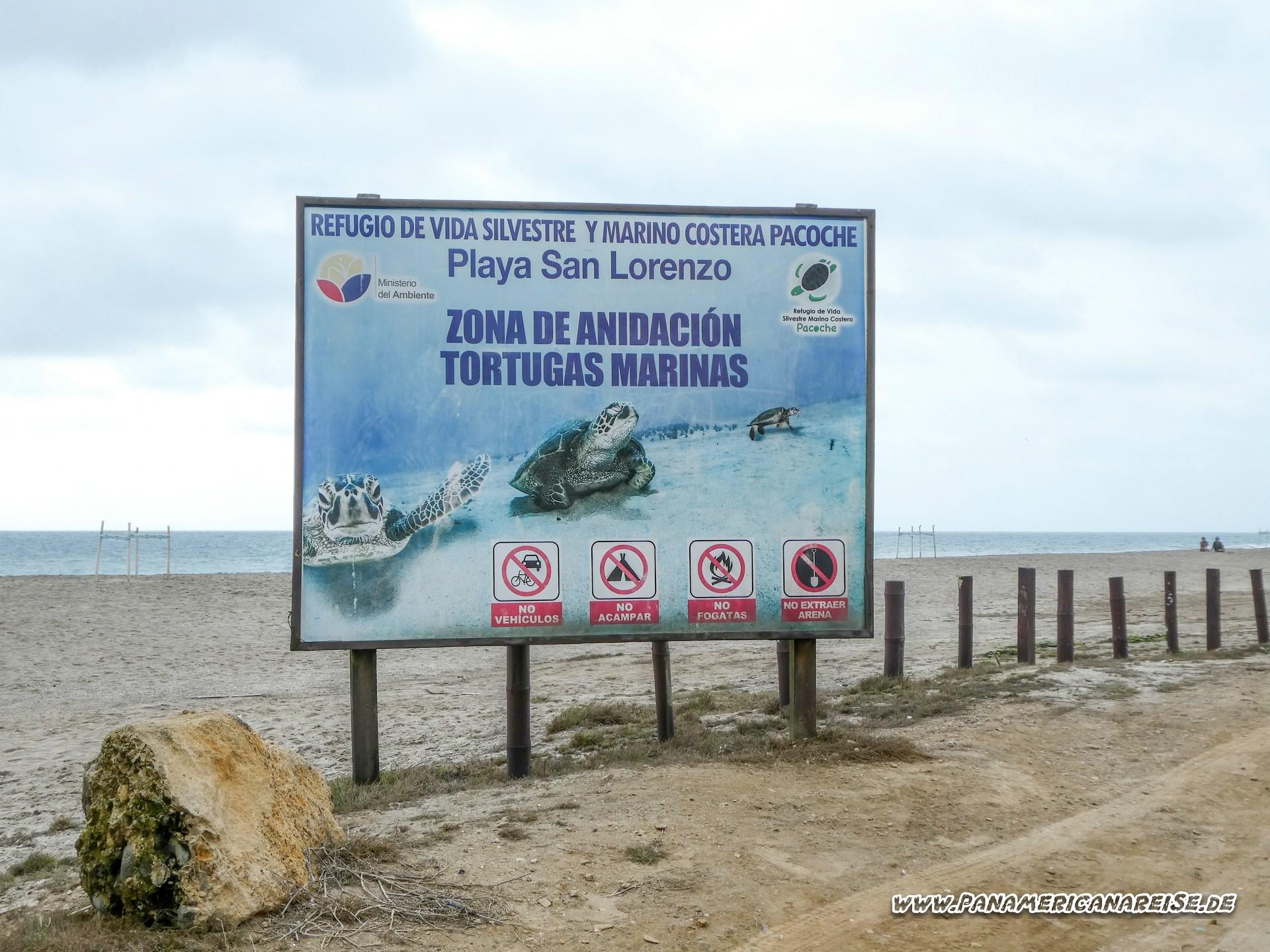San Lorenzo Ecuador Playa Tortugas